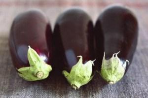 wright-eggplantseviche1-580x385